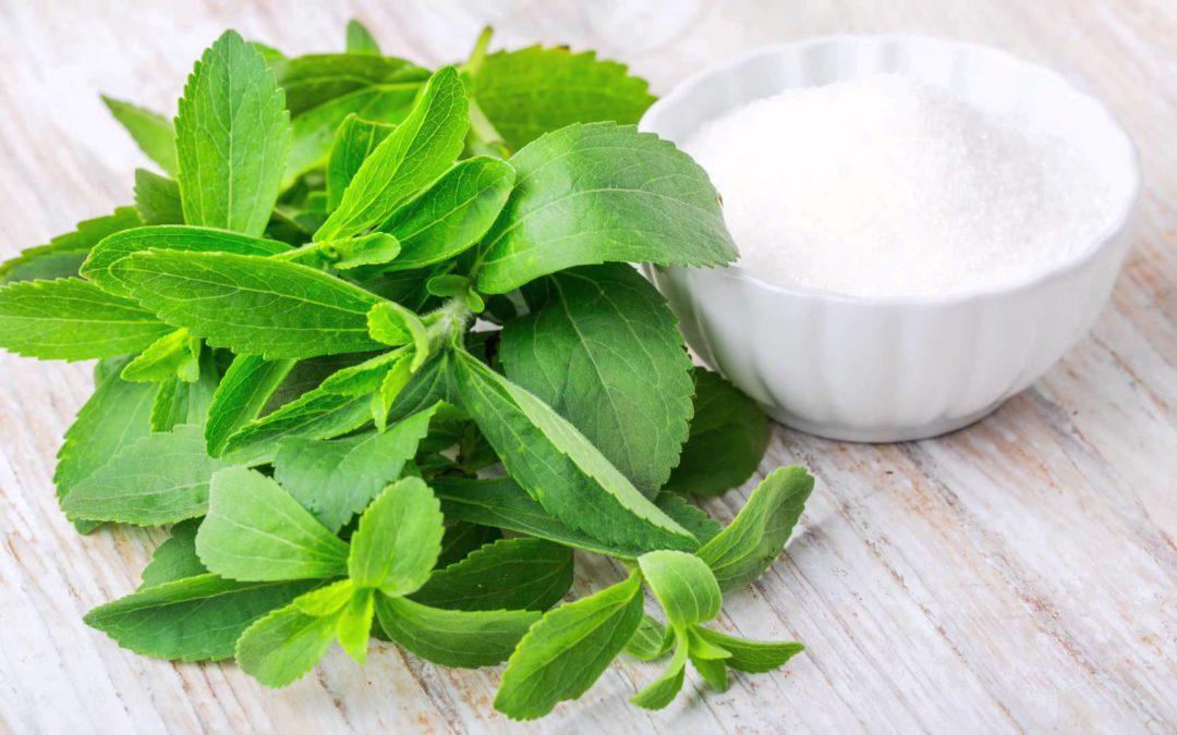 La stevia, dulce y sin azúcar